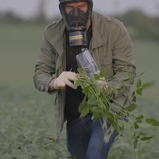 Paraguay: Poisoned Fields