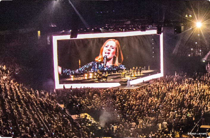 Movecat With Adele On World Tour