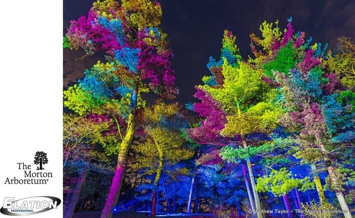 Over 700 Elation lights for 2020 Illumination – Tree Lights at The Morton Arboretum