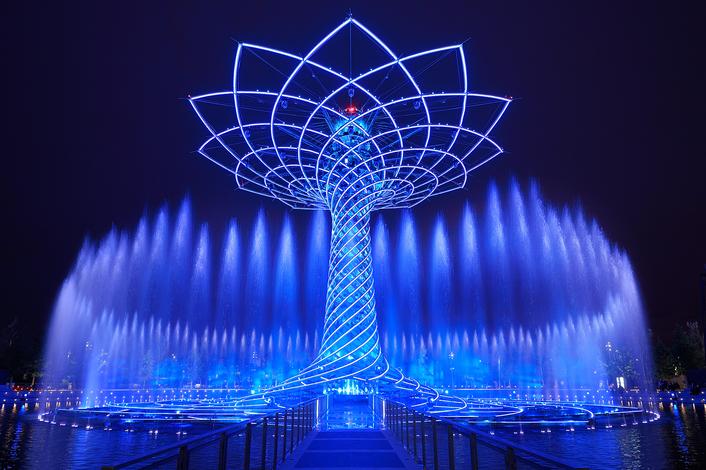 Tree of Life EXPO 2015
